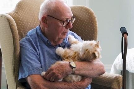 Robotic pet helps elderly combat loneliness