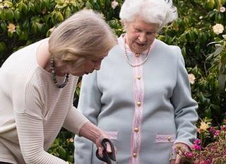 Home Instead Senior Care (Yeovil, Sherborne & Bridport), Yeovil